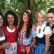 Wearing Trachtenkleid at the Fest