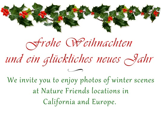 Holiday Slideshow of Nature Friends Winter Scenes